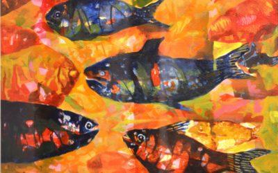 Fish -1