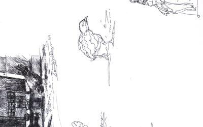 Free Drawing